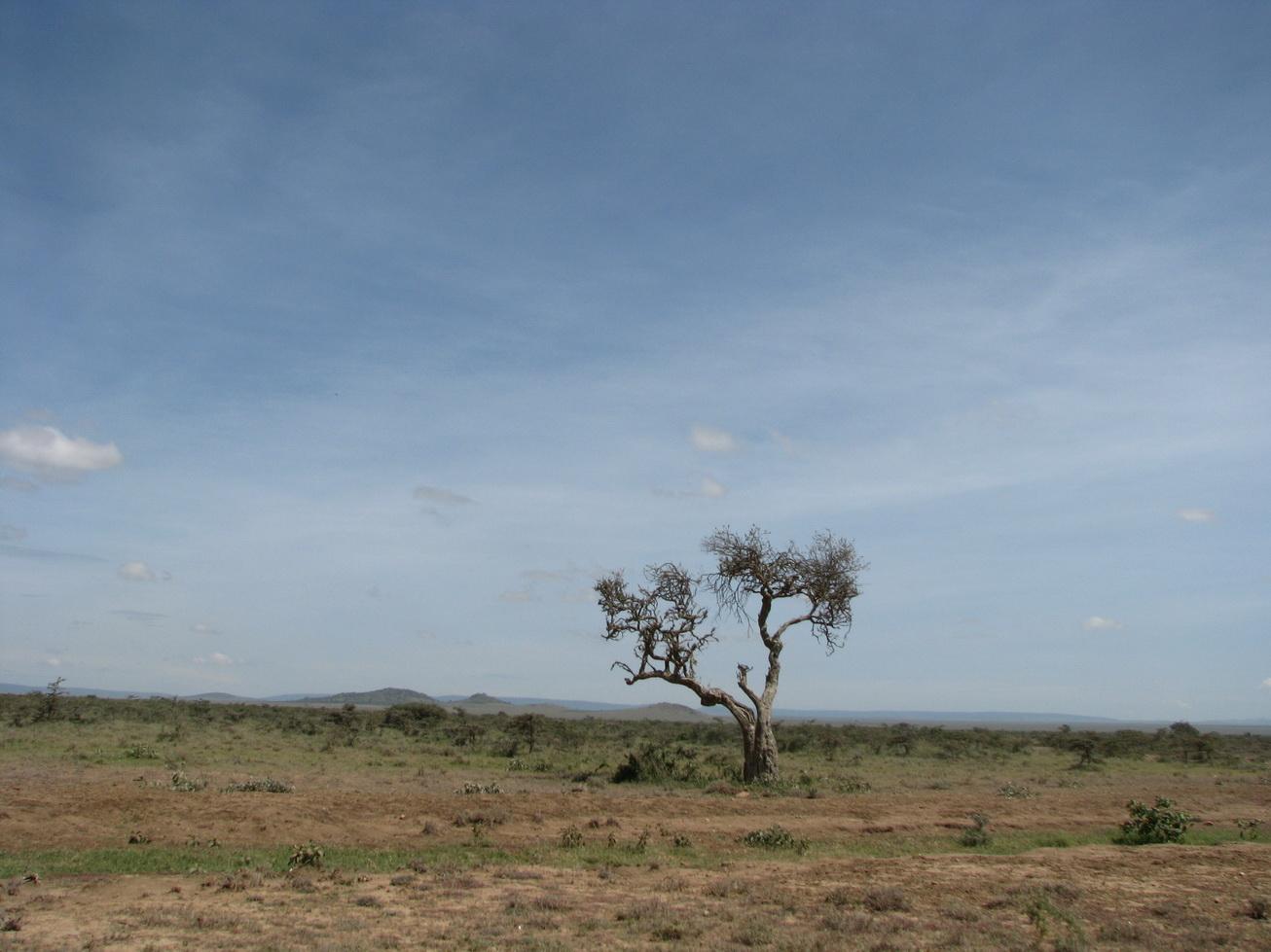 Put prema Maasai Mari