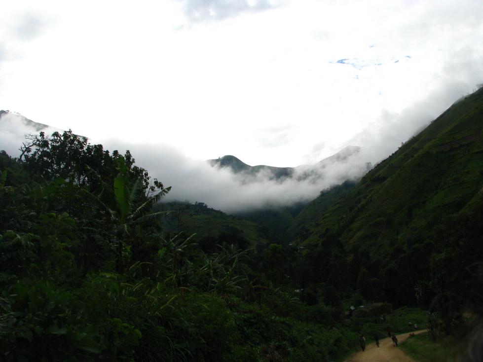 Planine Rwenzori